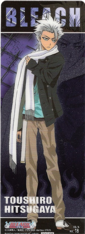 Toushiro Hitsugaya and Ichigo Kurosaki