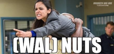 Brooklyn Nine-Nine Hintergrund possibly with a portrait entitled [WAL] NUTS