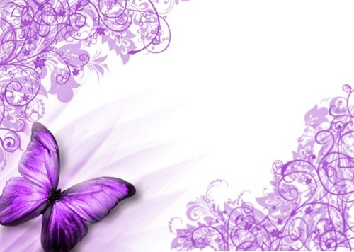 Butterflies Wallpaper With A Rose Bouquet And Camellia Called Purple Butterfly