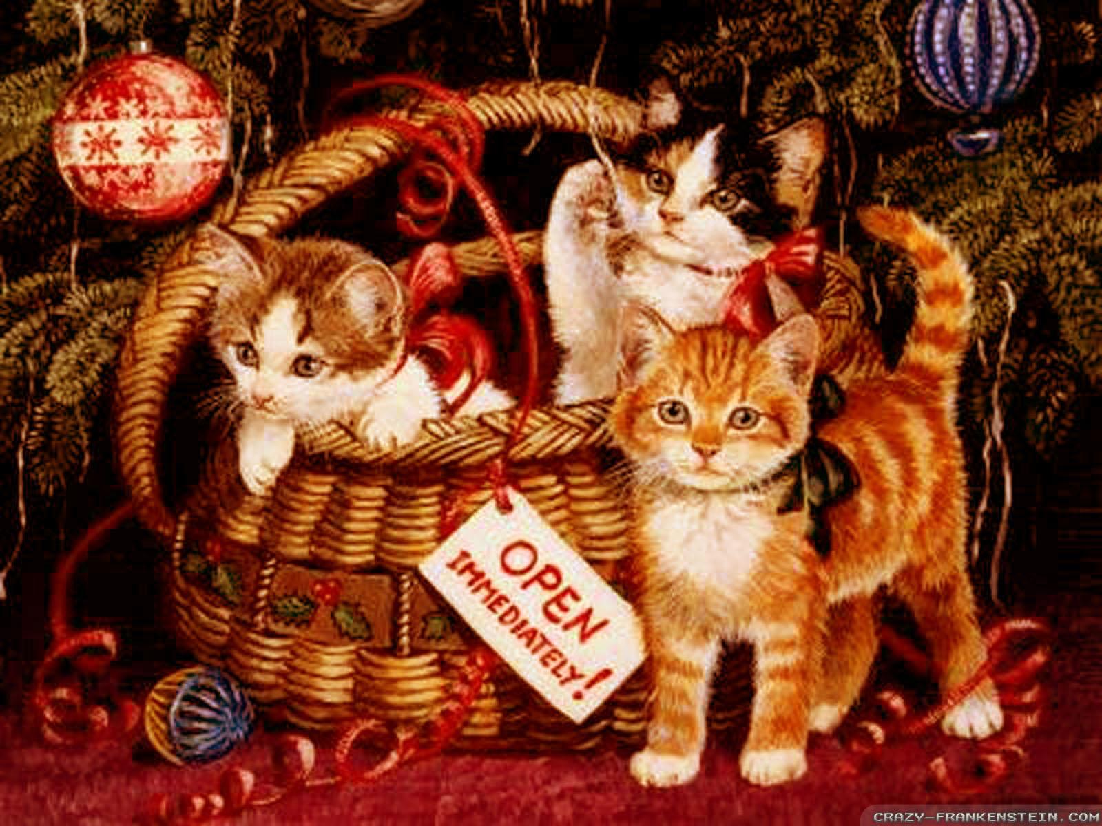 Christmas Kittens In Basket Cats Wallpaper 36711831