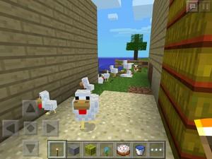 My mine craft chicken paradise
