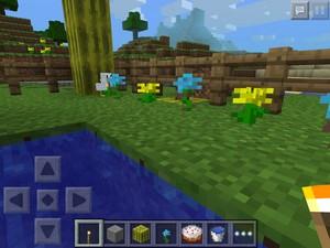 My mine craft chicken paradise garden