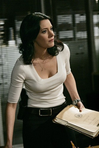 Мыслить как преступник Обои containing a sign entitled Paget Brewster - Emily Prentiss