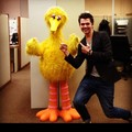 Having a blast on the pbs tour - damian-mcginty photo