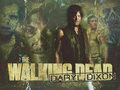 Norman/Daryl - daryl-dixon wallpaper