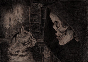 death and a cat