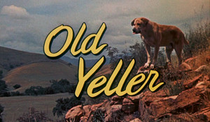 "1957 Дисней Film, ""Old Yeller"""