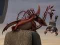 Changewing - dreamworks-dragons-riders-of-berk photo