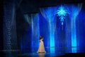 Idina Menzel performing Let it go at the Oscars - elsa-and-anna photo