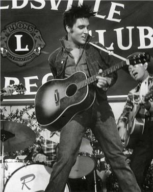 Elvis Presley ✨