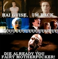 Harry Potter is brilliant
