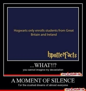 Hpotterfacts