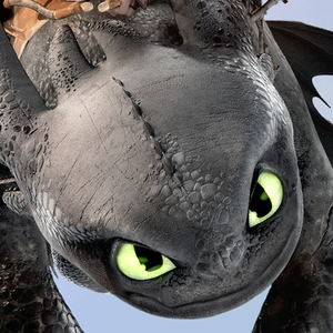 Older Toothless
