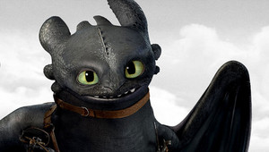 Toothless (Hiccup's)