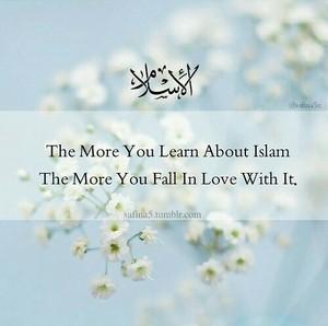 Islamic Reflections