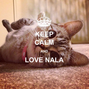 Keep Calm And amor Nala
