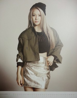 Girls' Generation 2014 calendar (Hyoyeon02)