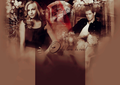 Only love is red - klaus-and-caroline wallpaper