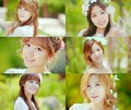 ♥Apink Secret Garden♥ - korea-girls-group-a-pink photo