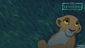 Kiara Lion King HD wallpaper Background 3/4