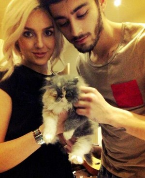Perrie and Zayn a few mouths back when they got there kitten :)