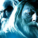 Gandalf/Dumbledore - lord-of-the-rings icon