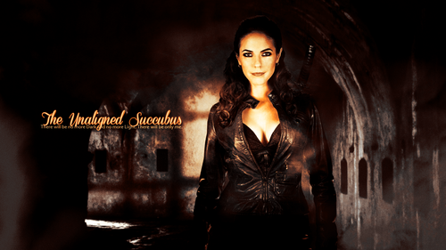 Lost Girl wallpaper called Bo Succubus