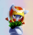 Melon Drop - my-little-pony-friendship-is-magic photo