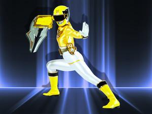 Tiger sword master