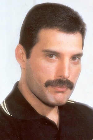 I love you, Freddie!