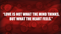 What the heart feels - quotes photo