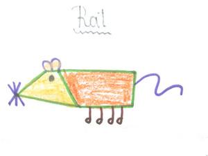 ラット drawing