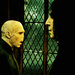 Snape and Voldy - severus-snape icon