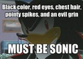 Must be sonic - shadow-the-hedgehog photo