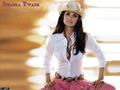 Shana Twain - shania-twain fan art