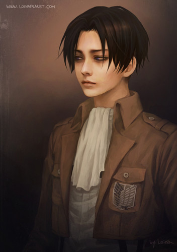 Shingeki no Kyojin (Attack on titan) wallpaper entitled Captain Levi