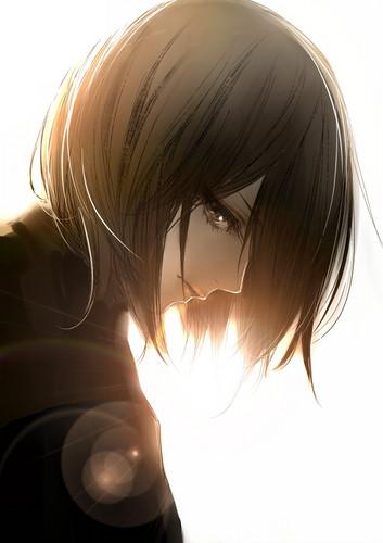 Shingeki no Kyojin (Attack on titan) wallpaper entitled Mikasa Ackerman