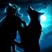 Padfoot and Moony - sirius-black icon