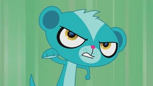 Action 猫鼬