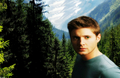 supernatural - Jensen Ackles wallpaper