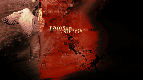 Tamsin (Lost Girl) wallpaper possibly with a sign and a street entitled Tamsin the Valkyrie