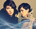 Tegan and Sara Wallpaper - tegan-and-sara wallpaper