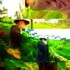 The Hobbit ikoni