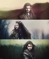 The Hobbit / Fili, Thorin & Kili - the-hobbit fan art