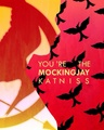 You're the Mockingjay, Katniss - the-hunger-games fan art