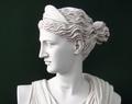 Artemis Bust