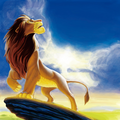 Beautiful Simba - the-lion-king photo
