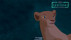 Nala TLK HD Wallpaper Collection 4/4