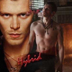 Klaus Mikaelson (Hybrid)