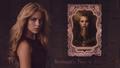 "the-originals - ""Betrayal's Kiss is Deadly"" wallpaper"